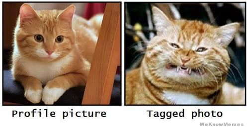 profile-pic-vs-tagged-pic
